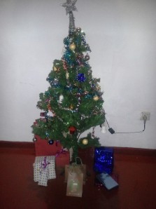 Lookie our pretty tree with ALL THE GIFTS! I GOT a 2014 planner *yay*, hair stuff *yay* and vouchers *yay*